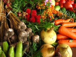 خوراکی های موثر برای تقویت سیستم ایمنی بدن