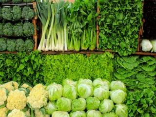 سبزی خشک یا فریز شده؟