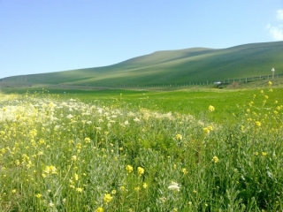 5 جاذبه بکر گردشگری ایران که تا به حال ندیده اید