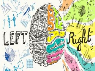 نیمکره راست مغز شما فعال تر است یا نیمکره چپ؟