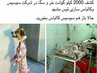 بالاخره 2000 کیلو گوشت سگ تبدیل به سوسیس شد؟+تصاویر