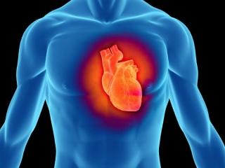 واقعا «ایست قلبی» ورزشکاران را می کُشد؟