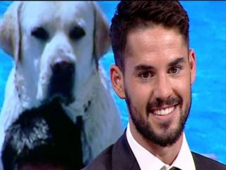 ستاره رئال مادرید اسم سگش را مسی گذاشت!