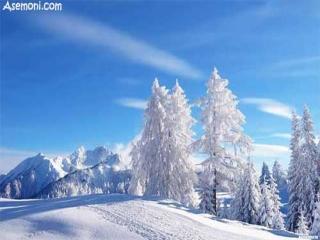 انواع ورزش های زمستانی