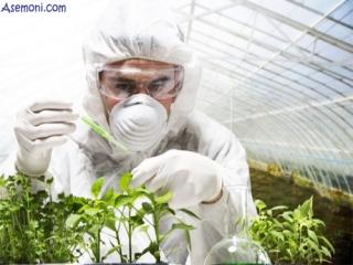 گیاه پزشکی چیست؟