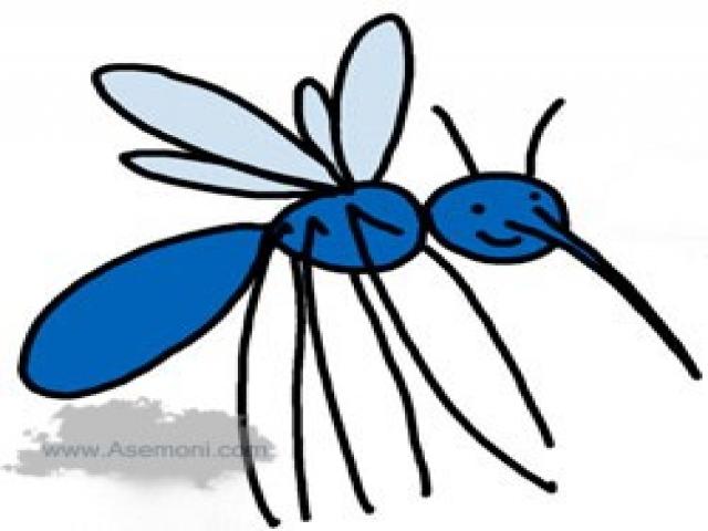 چطور پشه بدن انسان را نیش میزند؟