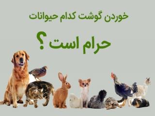 خوردن گوشت کدام حیوانات حرام است؟