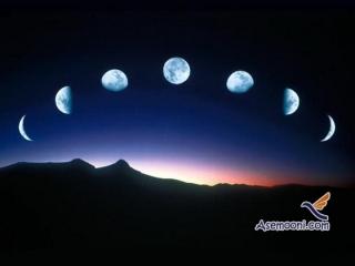 ماه های حرام کدام اند ؟