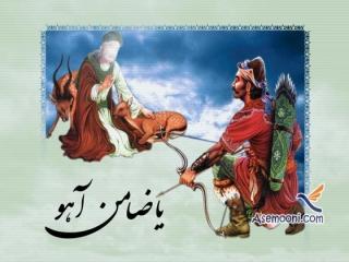 داستان ضامن آهو شدن امام رضا (ع)