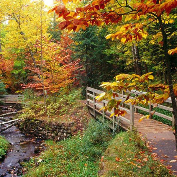 autumn-profile-photos-3