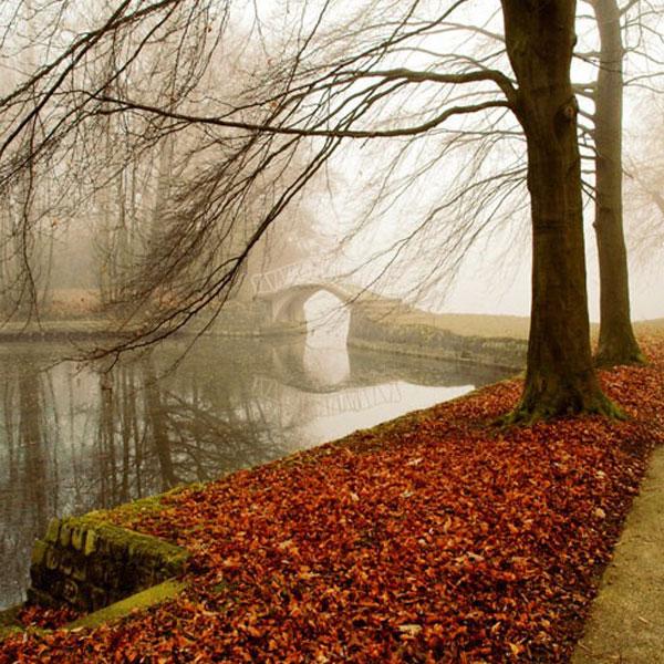 autumn-profile-photos44