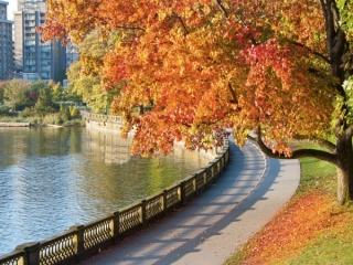 بهترین مکان ها برای مسافرت خارجی در پاییز