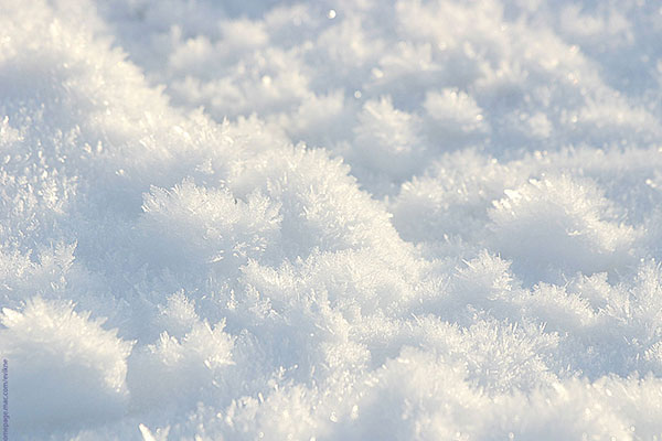 text-on-the-snow7