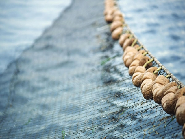 آموزش بافتن تور ماهیگیری