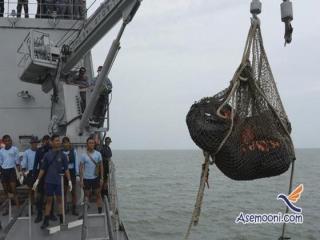جعبه سیاه هواپیمای ایر آسیای مالزی پیدا شد
