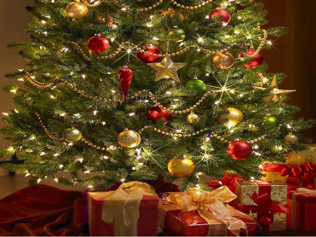 تاریخچه درخت کاج کریسمس