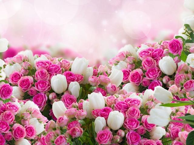 لیست اسامی گل ها