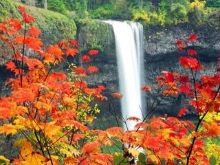شعری درباره پاییز