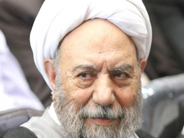 آیت الله شیخ حسن صانعی ، عضو مجمع تشخیص مصلحت نظام