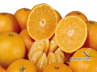 واردات یا صادرات پرتقال !