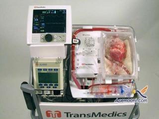موفقیت دانشمندان در پیوند نخستین قلب مرده جهان
