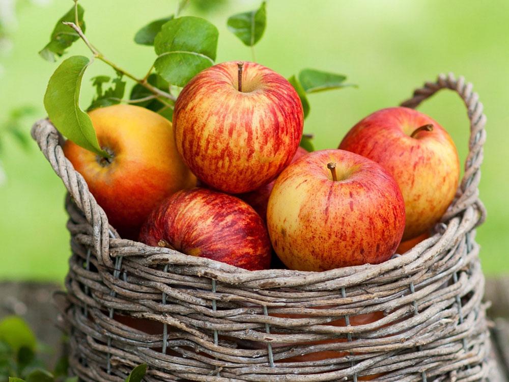 apple-properties3