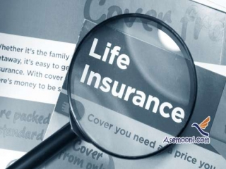 بیمه عمر چیست ؟