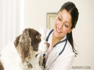 بیماریهای مشترک انسان و سگ