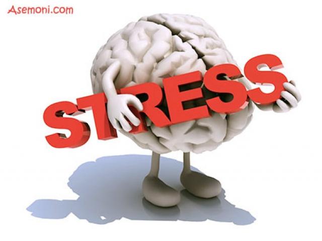 استرس (stress) در زبان انگلیسی