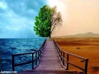 راه های نگهداری از محیط زیست