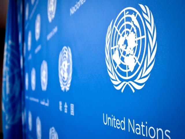 سازمان ملل متحد (UN)