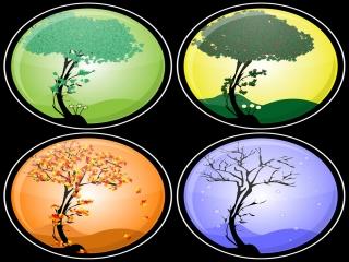 علت به وجود آمدن فصل ها در کره زمین چیست؟