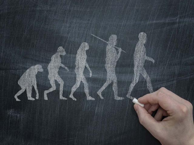 چرا داروین نظریه تکامل انسان از نسل میمون را مطرح کرد؟