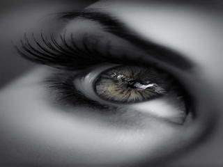به چشمانت بياموز كه هر كس ارزش ديدن ندارد