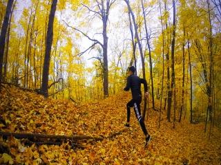 چرا باید در فصل پاییز پیاده روی کرد؟