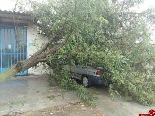 هشدار وقوع طوفانی سهمگین در شمال کشور /شرکتهای برق بهحالت آمادهباش درآمدند