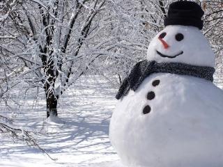 زمستانم آرزوست...