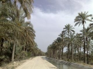 دشتستان و تنگستان بوشهر