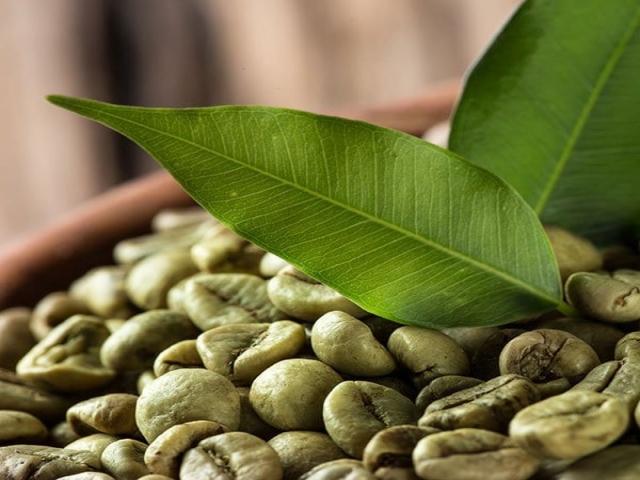 بهترین مارک قهوه سبز ، از کپسول و قرص تا فروش قهوه سبز در عطاری