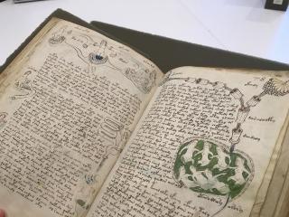 کتاب مرموز دست نوشته های ووینیچ