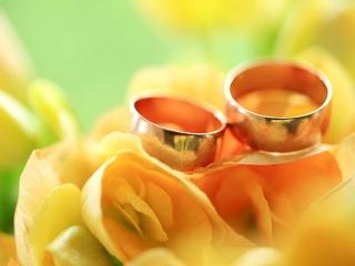 احکام همبستری زوجین و روابط زناشویی در اسلام