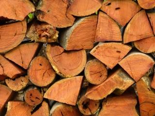 چوب چیست و انواع مصالح چوبی و کاربرد آنها