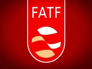 فلاحت پیشه : FATF ممکن است به صورت مشروط تأیید شود