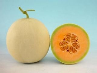 تفاوت میوه های طالبی، خربزه، گرمک، دستنبو و ملون!
