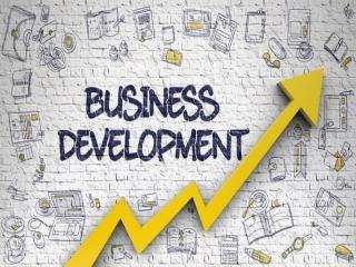 استراتژی های توسعه کسب و کار