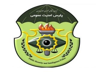 پلیس پاوا ، پلیس اطلاعات و امنیت عمومی ناجا