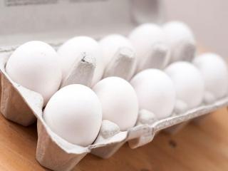 واردات تخم مرغ ترکیهای در آینده نزدیک