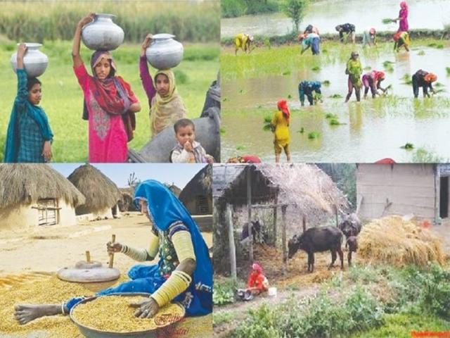 ایده های کارآفرینی روستایی