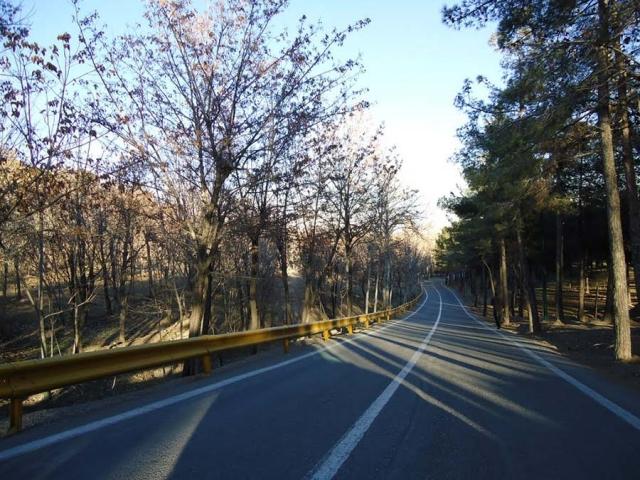 شرطبندی سر وسعت آتشسوزی پارک چیتگر