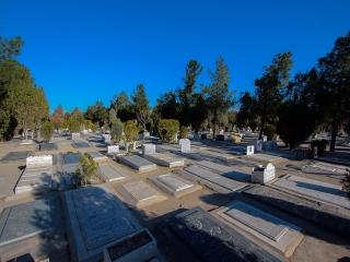 بهشت زهرا تا سه سال آینده برای اموات تهران جا دارد